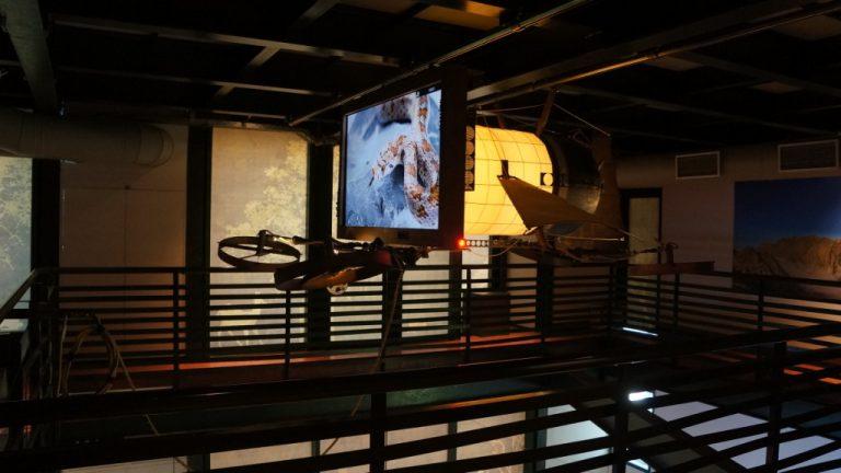 Natural History Museum Crete